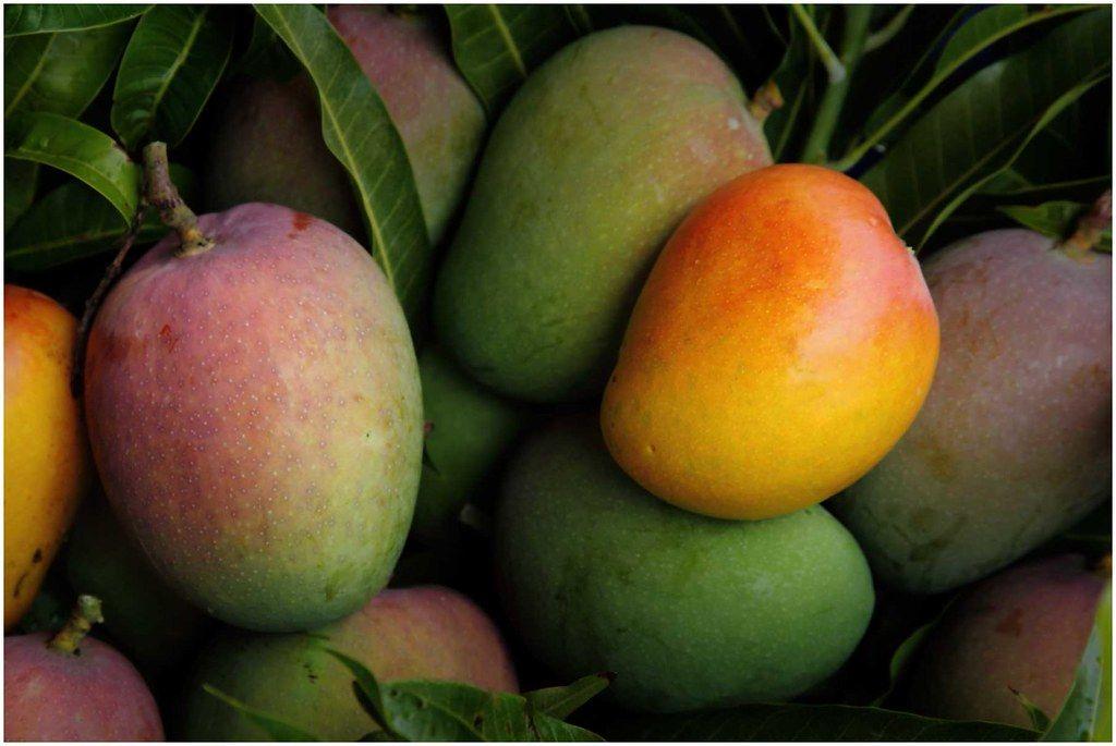 Mrożone owoce i ich właściwości